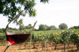 Insel-Weine kommen in Inca auf den Tisch
