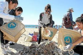Schüler sammeln Plastikmüll am Strand ein