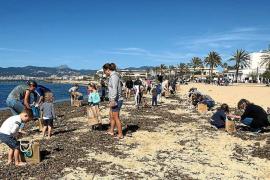 120 Freiwillige nahmen an der Strandputzaktion teil.