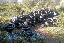 Umweltdelikte schießen auf Mallorca ins Kraut