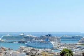 Über 600 Anlegemanöver von Oceanlinern in Palma erwartet