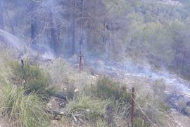 Ab jetzt gilt das Feuerverbot in Wäldern auf den Balearen