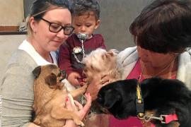 Tierheim-Hund Rony zieht zu neuer Familie