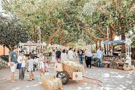 Bauernmarkt in Puerto Portals steht wieder an