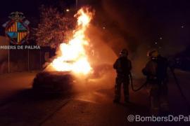 Brandserie in Palma nimmt einfach kein Ende