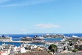 Erstmals in diesem Jahr fünf Oceanliner in Palma