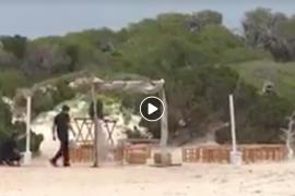 Umweltministerium stoppt Hochzeit am Es Trenc