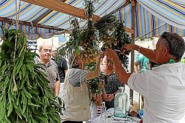 Dorfmärkte auf Mallorca: Von Kartoffeln und Kräutern
