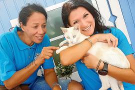 Sängerin Antonia will Tieren ein neues Zuhause geben