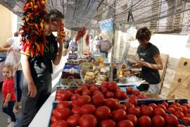 Frisches von den Feldern Mallorcas gibt es auf den Wochenmärkten der Insel zu kaufen.