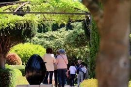 Die Marivent-Gärten sind kostenfrei zu besichtigen, wenn die Königsfamilie nicht anwesend ist.