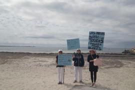 Tourismusverband läuft Sturm gegen Seegras am Es Trenc