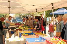 Drei Initiativen auf den Inseln sorgen für lokale Bio-Waren