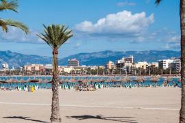 Im TV: Die Sommertrends 2019 auf Mallorca