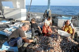Fischerboot-Ausflüge auf Mallorca sehr erfolgreich