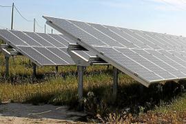 Es gibt bereits Solarparks auf Mallorca.