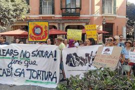 """Vor dem Rathaus von Palma de Mallorca demonstrierten Stierkampfgegner gegen die """"Corridas""""."""