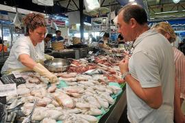 Sepia-Fang vor Mallorca fällt gering aus