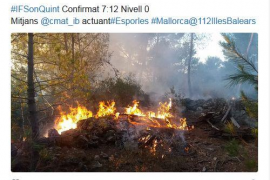 Ermittler gehen davon aus, dass das Feuer bei Esporles vorsätzlich gelegt wurde.