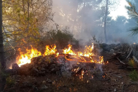 Mutmaßlicher Brandstifter von Esporles festgenommen