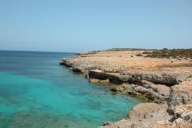 Verschwundener Taucher vor Mallorca tot aufgefunden