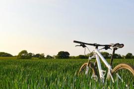 Erstes Fahrrad-Festival für die ganze Familie