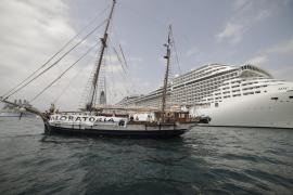 Auch Reedereien befürworten weniger Kreuzfahrtschiffe