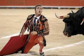 Demo gegen Stierkampf in Inca