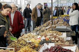 Die schönsten Herbstmärkte auf Mallorca