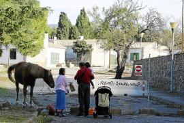 Ein Mallorca-Kleinod unter Palmen, das zunehmend verfällt