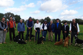 14 Hunde nahmen an dem Wettbewerb teil.