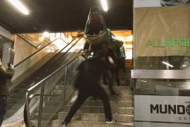 Drache aus Protest in Einkaufszentrum bugsiert