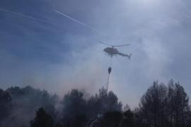Brände vernichteten 99 Hektar Wald auf Mallorca