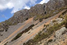 Geologen wollen Geröllhänge auf Mallorca schützen