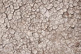 Das Mallorca-Jahr war heiß, doch die Zukunft wird immer extremer