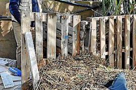 So funktionieren Schrebergärten auf Mallorca