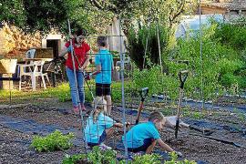 Gemeinsames Gärtnern schweißt zusammen: Ein Projekt für die ganze Familie.