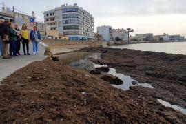 Arbeiten in der Cala Gamba starten Ende Januar