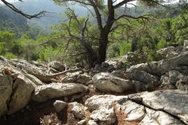 Wanderer bei Escorca vermisst