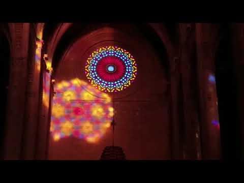 Winterliches Lichtwunder in Palmas Kathedrale gefeiert
