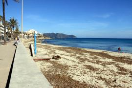 Strand von Cala Millor gibt derzeit kein gutes Bild ab