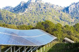 Volle Sonnenkraft voraus auf Mallorca