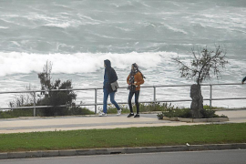 So hat der Wind auf Mallorca gewütet