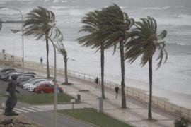 Neues Sturmtief nähert sich Mallorca