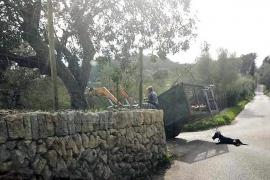 Traktorfahrer zieht Hund zwei Kilometer hinter sich her