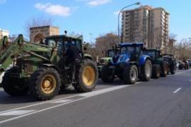 Warum 200 Traktoren durch Palma de Mallorca knatterten