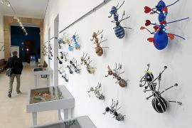 Ameisen-Kunst ehrt arbeitende Frauen