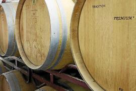 Wein an der Nordküste: Banyalbufars altes Gold