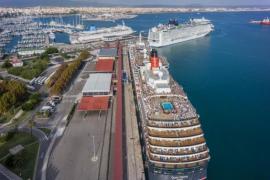 Bessere Luft in Palmas Hafen seit Ausgangssperre