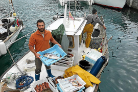 Fischer auf Mallorca steigen auf Direktverkauf um